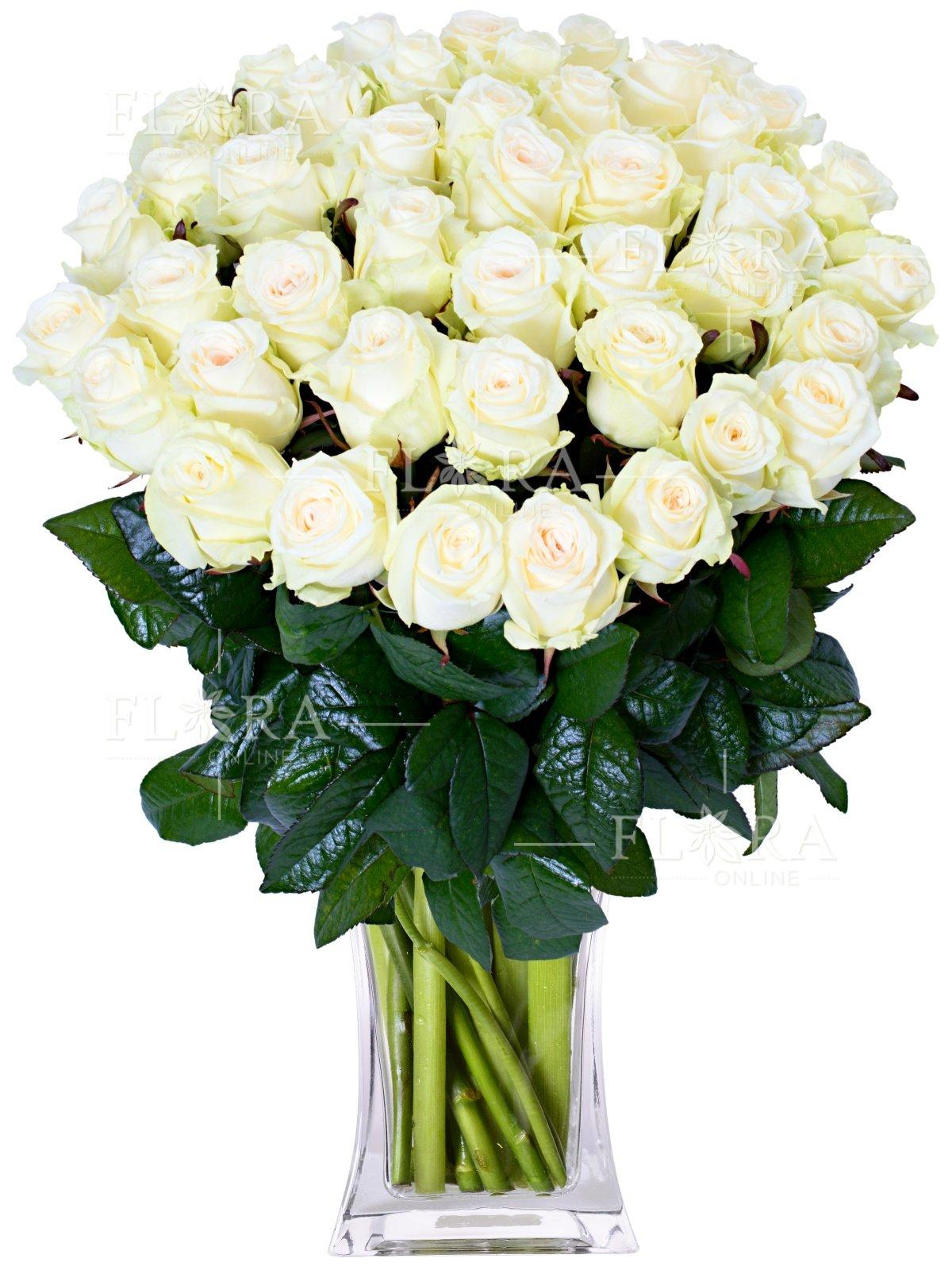 Оформить, картинки белые розы букет